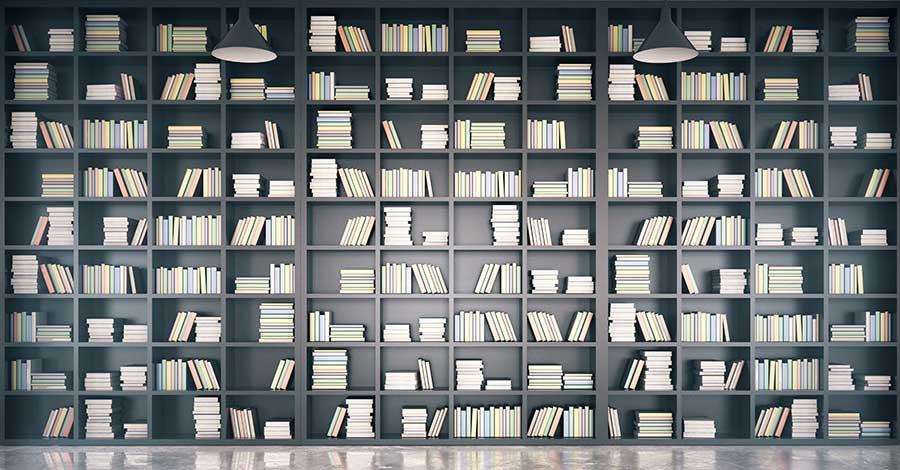 Bild zeigt Bücher