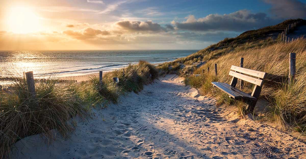 Bild zeigt das Meer, Dünen und eine Bank