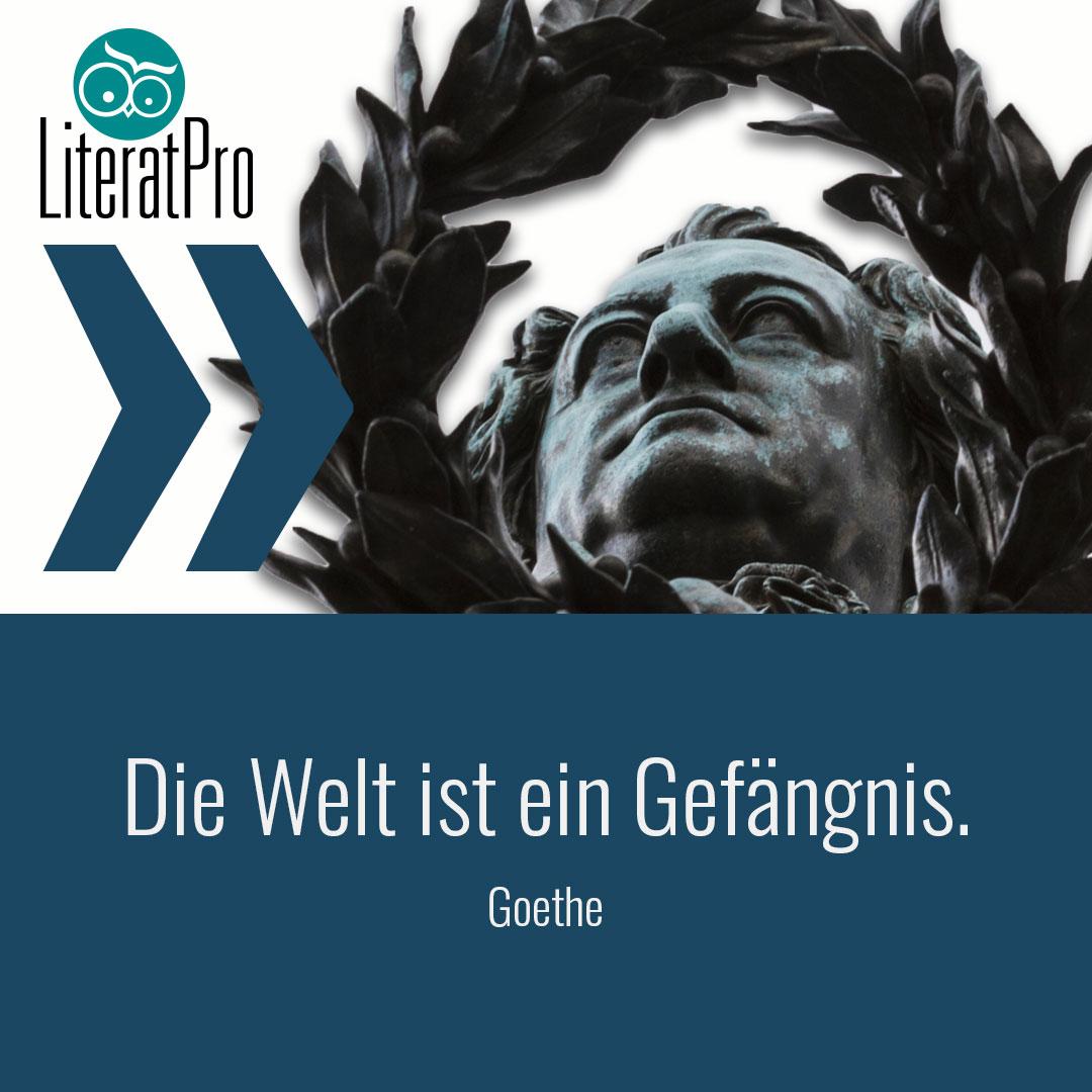 Bild zeigt Zitat von Goethe Die Welt ist ein Gefängnis