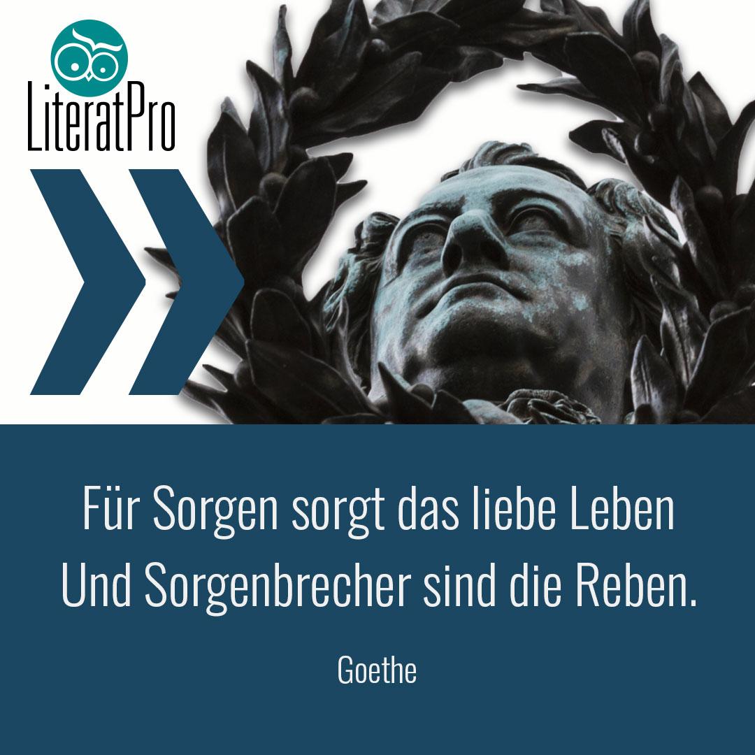 Bild zeigt Zitat von Goethe Für Sorgen sorgt das liebe Leben Und Sorgenbrecher sind die Reben