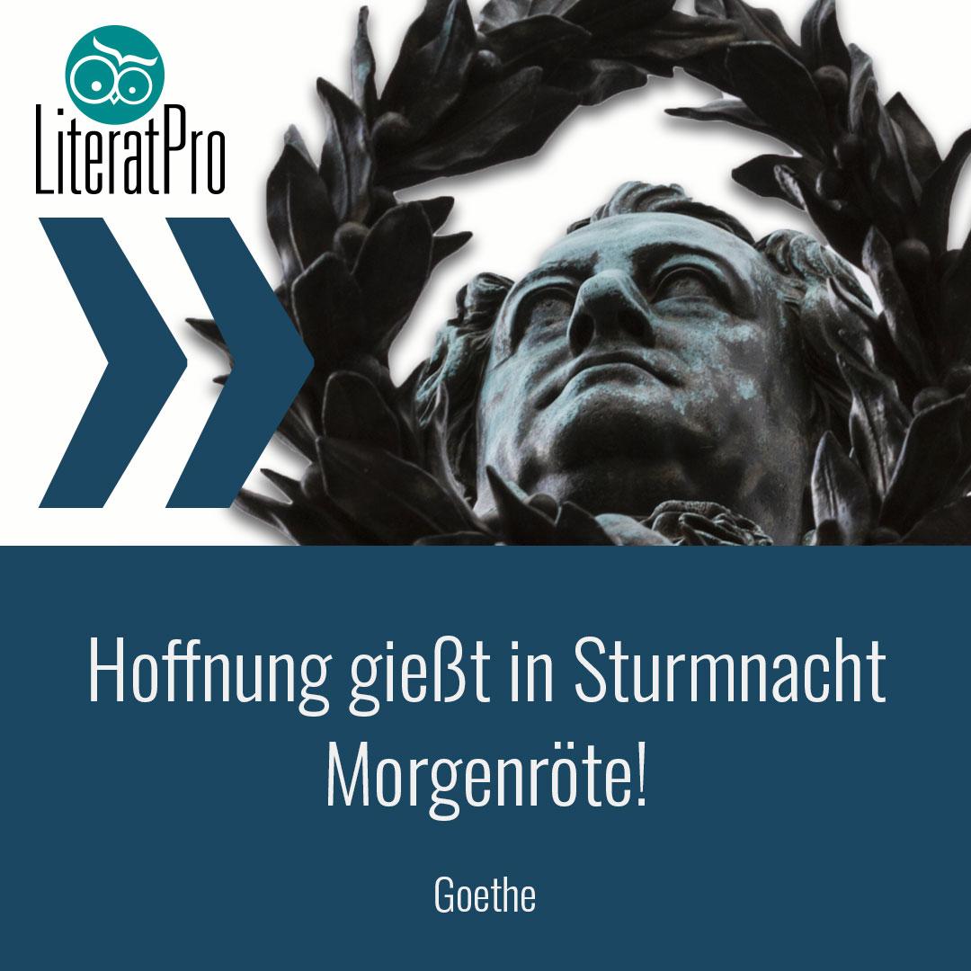 Bild zeigt Zitat von Goethe Hoffnung gießt in Sturmnacht Morgenröte!