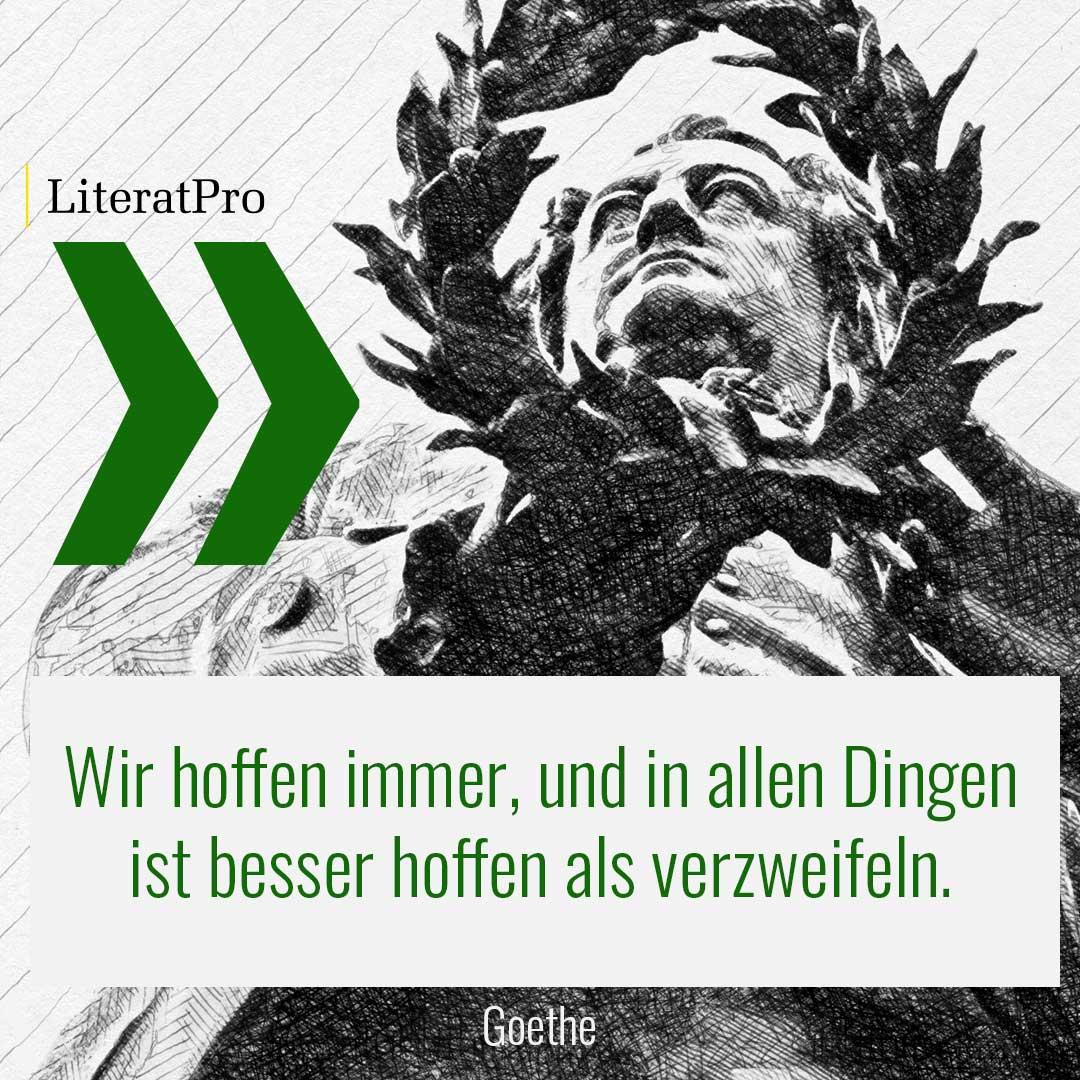 Bild zeigt Goethe und Aphorismus Wir hoffen immer, und in allen Dingen ist besser hoffen als verzweifeln.
