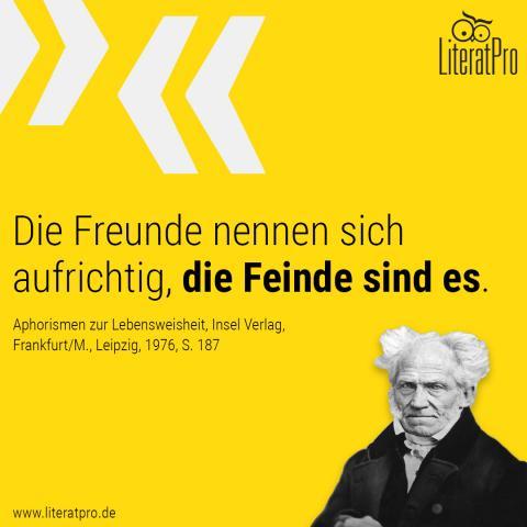 Bild zeigt Schopenhauer und Zitat Die Freunde nennen sich aufrichtig. Die Feinde sind es – daher man ihren Tadel zur Selbsterkenntnis benutzen sollte, als eine bittere Arznei.