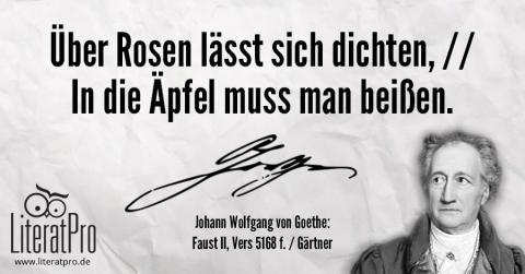 Bild zeigt Zitat von Goethe Über Rosen lässt sich dichten, // In die Äpfel muss man beißen.