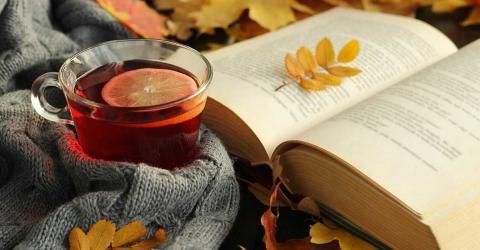 Bild zeigt Buch und Herbstblätter