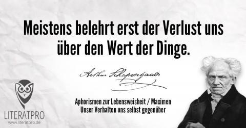 Bild zum Arthur Schopenhauer Aphorismus